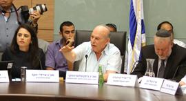 הדיון בוועדה, צילום: עמית שאבי