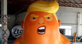 בובה של טראמפ שנופחה כחלק מהמחאה נגדו במסגרת ביקורו בלונדון, צילום: Trump Baby