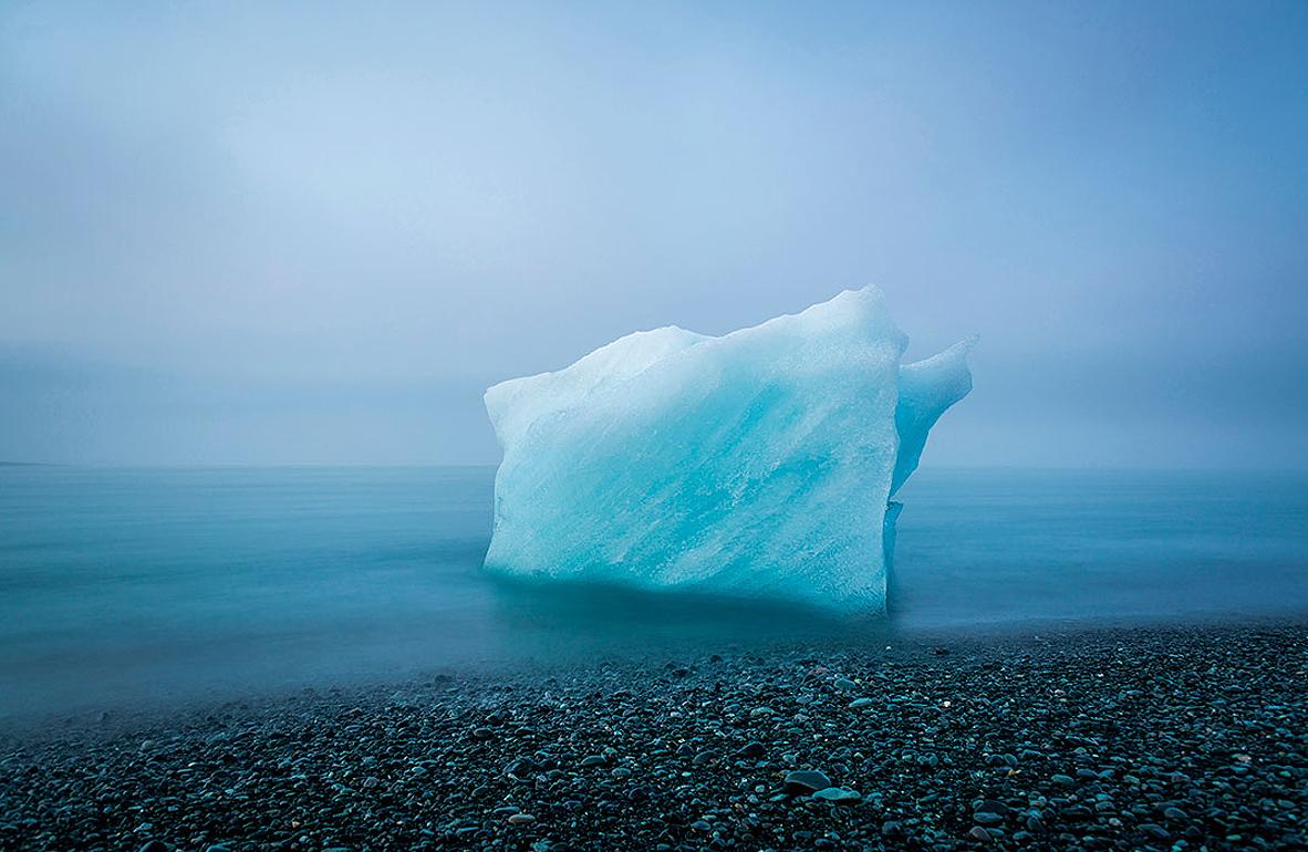 צילום: the nature conservancy - Andre Mercier