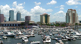 טמפה פלורידה זירת ה נדלן, צילום: skeeze-Pixabay