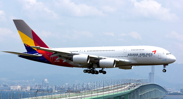 מטוס של חברת התעופה אסיאנה. שבע טיסות יצאו היום ללא ארוחות, צילום: ויקיפדיה