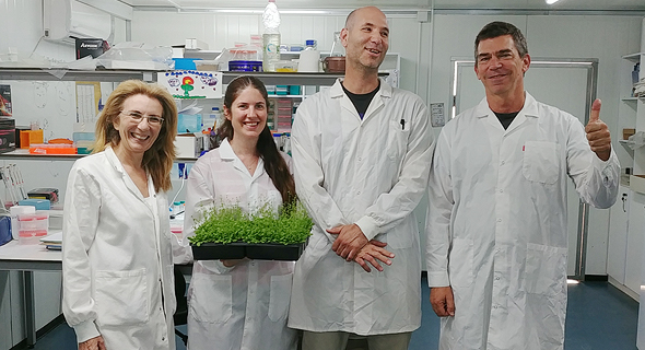 Right to left, PlantArcBio Dror Shalitin, Noam Grimberg, Arava Shatil, and Aviva Katz. Photo: PR