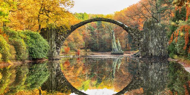 משושים, עיגולים ומלבנים: הגיאומטריה של הטבע