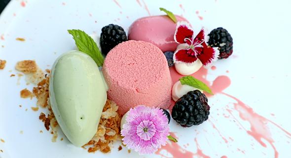 """קינוח """"הפנתר הוורוד"""" עם מסקרפונה, קרם תות, פטל טרי, צילום: דנה קופל"""