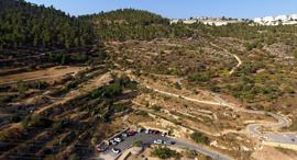 רכס לבן ירושלים תוכנית ספדי, צילום: דב גרינבלט, החברה להגנת הטבע