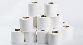 """נייר טואלט שגרירות ארה""""ב מוכרת, צילום: שאטרסטוק"""