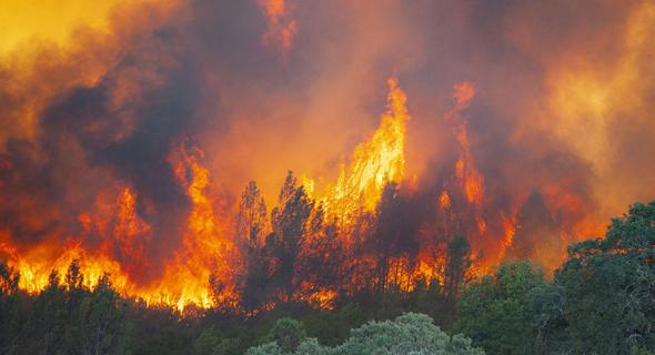 שריפת ענק בצפון קליפורניה
