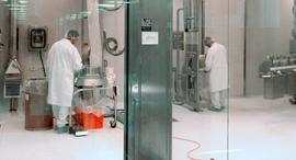 Teva factory. Photo: Bloomberg