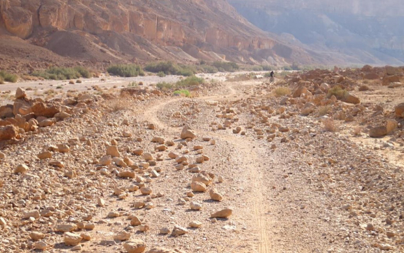 Founding a startup is like embarking on a journey. Photo: Israel Land Authority