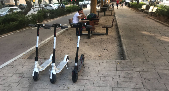 Bird e-scooters in Tel Aviv's Rothschild Boulevard. Photo: PR