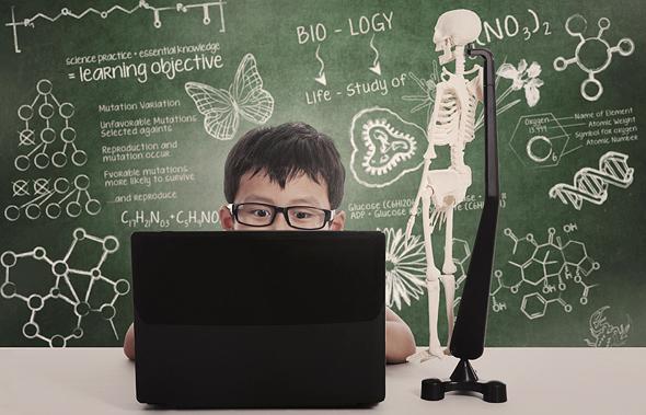 תלמיד ומחשב, צילום: שאטרסטוק
