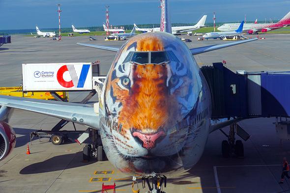 מטוס ג'מבו בצביעה יצירתית במיוחד