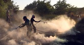 מגזין 5.9.2018 צוות תורנות שריפות עוטף עזה באיזור בארי בעת כיבוי שריפה היום, צילום: חיים הורנשטיין