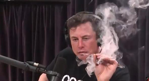 אלון מאסק עישון מריחואנה, צילום מסך: טוויטר