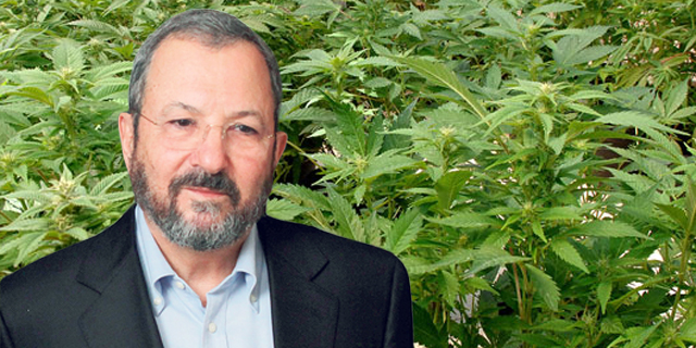 Ehud Barak-Chaired Cannabis Outfit InterCure Raises $12 Million in Private Placement