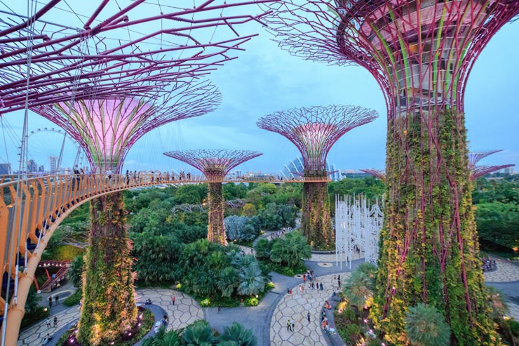 Gardens by the Bay, סינגפור , צילום: שאטרסטוק
