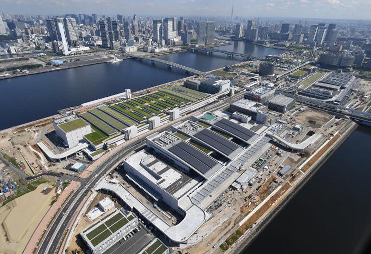 שוק הדגים החדש Toyosu בטוקיו