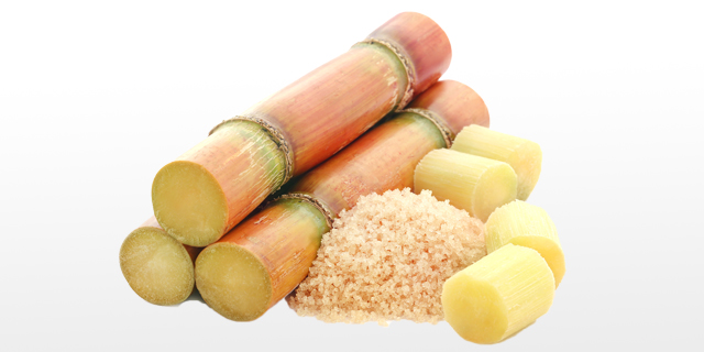 קנה מצוץ: לבשל ולאפות עם קני סוכר