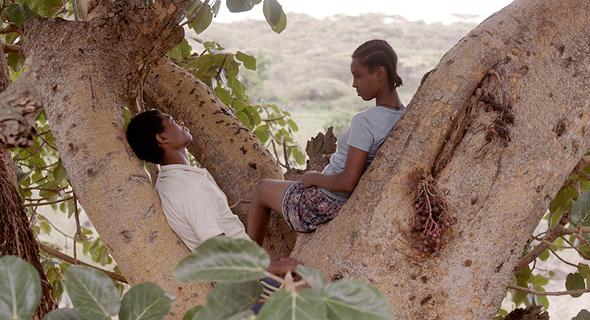 """""""עץ תאנה"""". עיצוב תקופתי מרשים , צילום: דניאל מילר"""