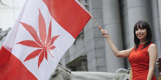 הקנאביס חוקי פחות משבוע, ובקנדה כבר מורגש מחסור