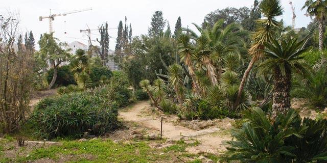 """אחרי 50 שנה: """"הגן הנעול"""" של כפר סבא ייפתח לציבור"""