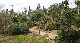 גן הברון מנשה בכפר סבא