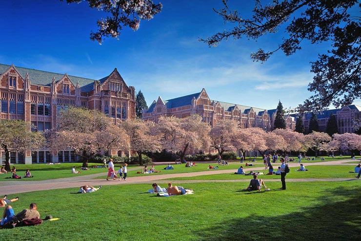 אוניברסיטת וושינגטון , צילום: UW
