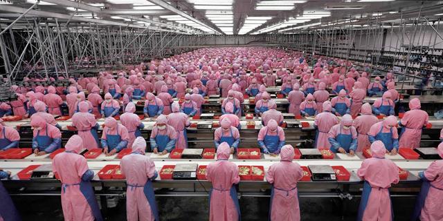 HP, Dell, מיקרוסופט ואמזון מתחילות להתארגן לקראת צמצום הייצור בסין