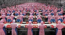 עובדי ייצור בסין, צילום: youtube