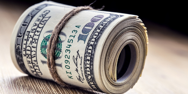 דולרים דולר כסף מגולגל, צילום: שאטרסטוק