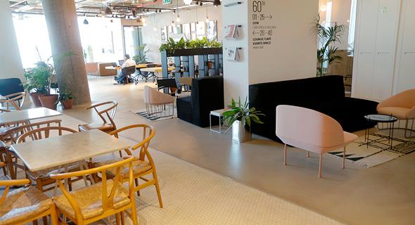 משרדי LABS שרונה חללי עבודה, צילום: עמית שעל