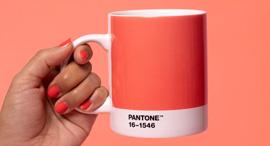 """ספל עם צבע השנה ל-2019, """"אלמוג חי"""", צילום: Pantone"""