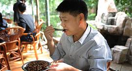 סיני אוכל מקקים מטוגנים, צילום: Weiboo