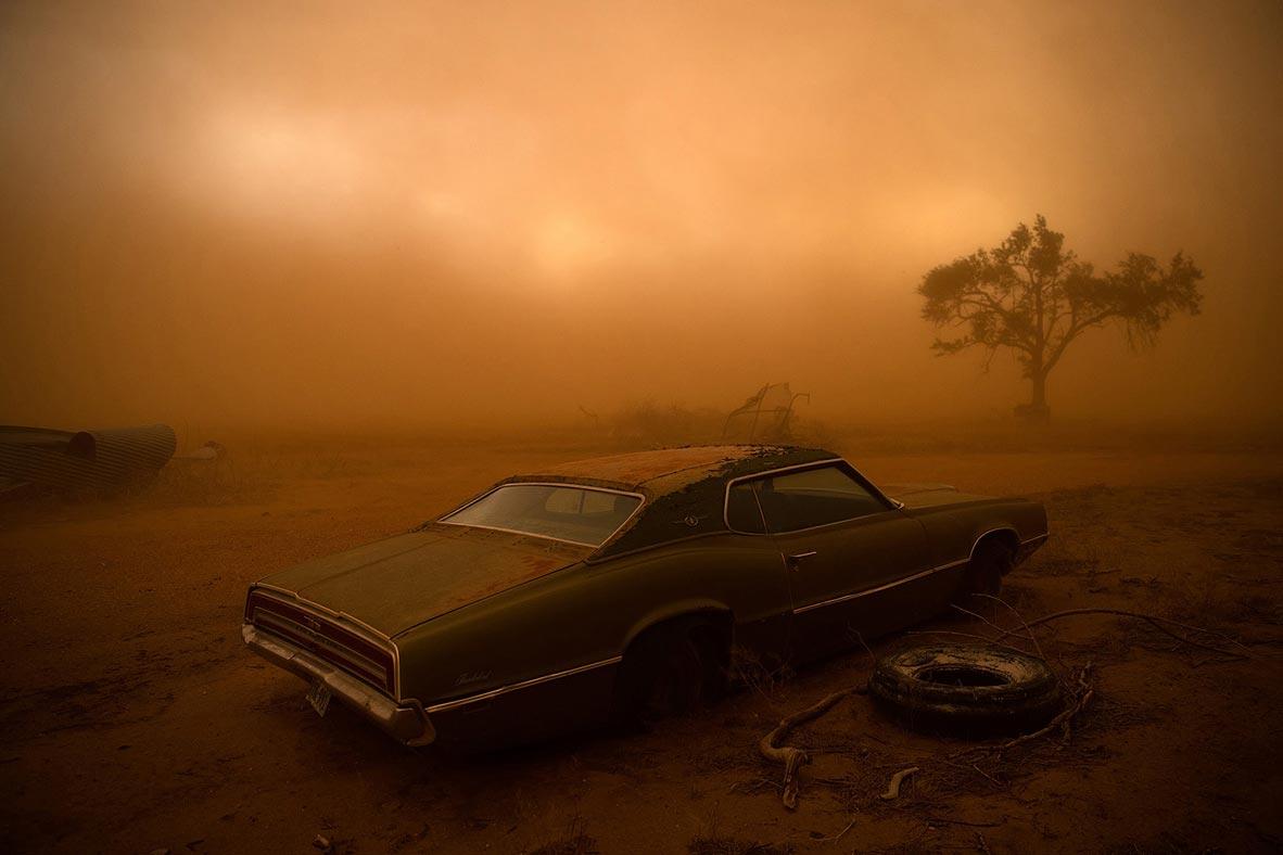צילום: Nicholas Moir / National Geographic Photo Contest