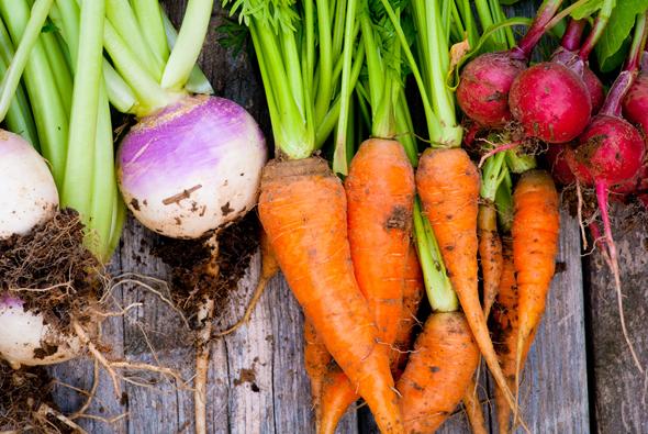 ירקות, צילום: שאטרסטוק