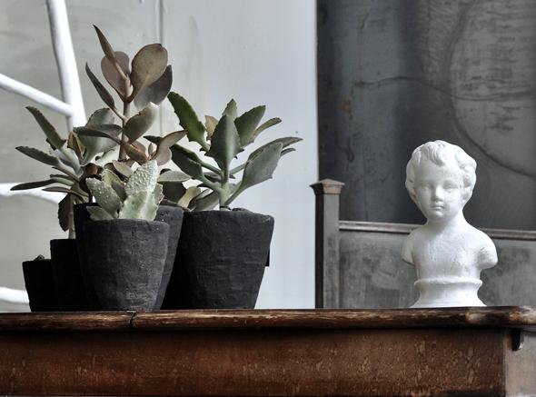 החנות במשתלה, עיצוב וצילום: שרון ברונשר