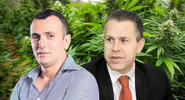 "גלעד ארדן ו שי באב""ד על רקע קנאביס, צילום: אוראל כהן"