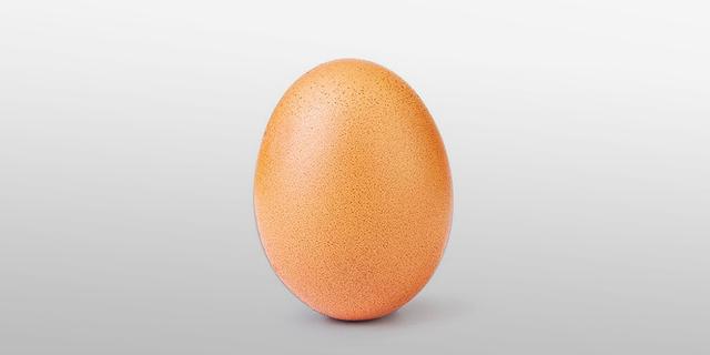 , צילום: Instagram/world_record_egg