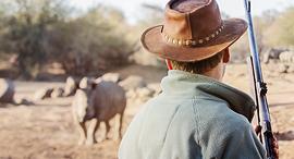 ציד צייד בעלי חיים ספארי, צילום: שאטרסטוק