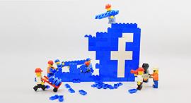 פייסבוק עבודה בהייטק רשת חברתית, צילום: שאטרסטוק