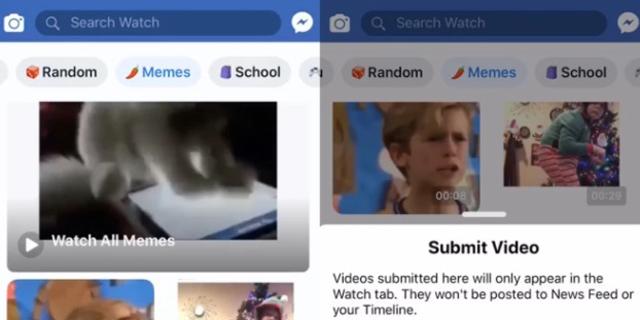 פייסבוק מפתחת את LOL, שירות ממים ותוכן ויראלי לצעירים