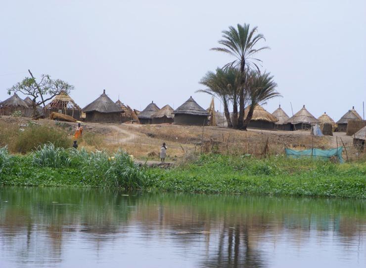 , צילום: african.co.il