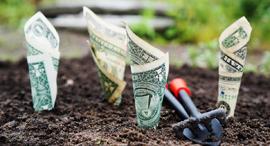 השקעה, צילום: Pixabay