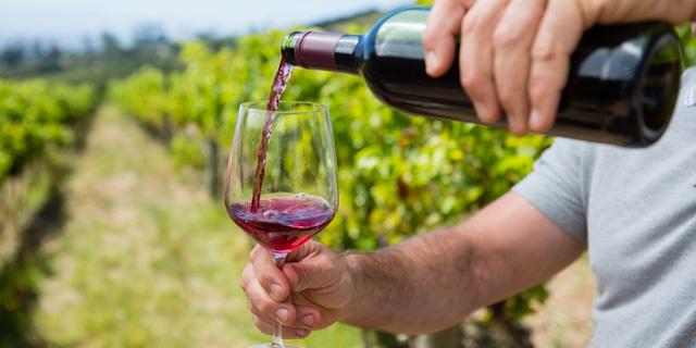 מחקר: התחממות של שתי מעלות תפגע קשות ב-11 זני ענבים ליין