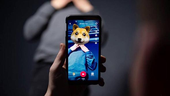 אפליקציית טיקטוק, צילום: איי אף פי