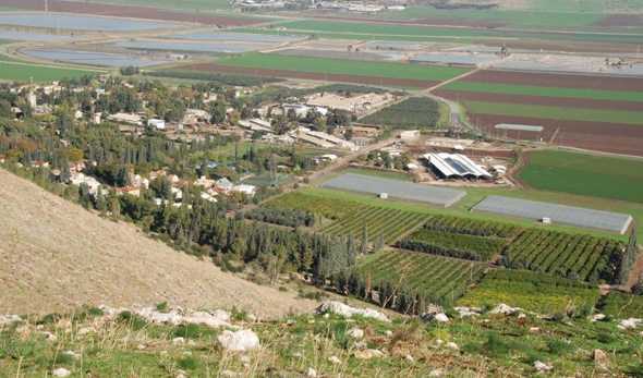 קיבוץ בית אלפא עמק יזרעאל