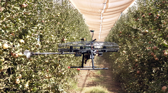 Tevel's fruit-picking drone. Photo: Tevel Aerobotics Technologies Ltd.