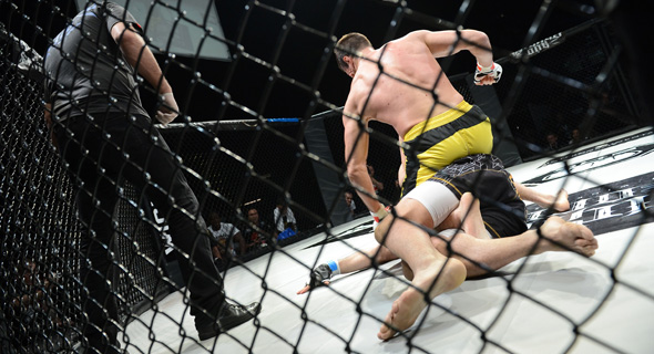A UFC match. Photo: Shutterstock