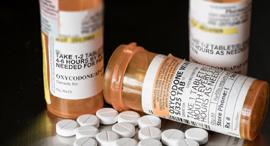 אוקסיקודון, משככך כאבים אופיואידים, צילום: שאטרסטוק