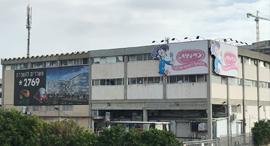 מפעל ממתקים כרמית, צילום: אמיר זיו